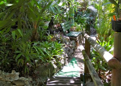 Tropical Garden path at Parkwood